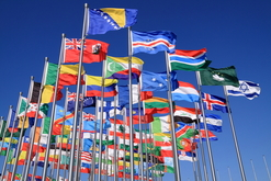 picture of global flags
