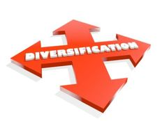 Diversification%20feature%20image%202